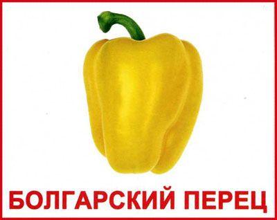 Вундеркинд С Пеленок Английский